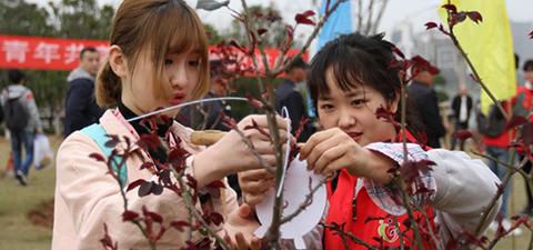 """第三届""""鄂台青年,共美江城""""植树活动在武..."""